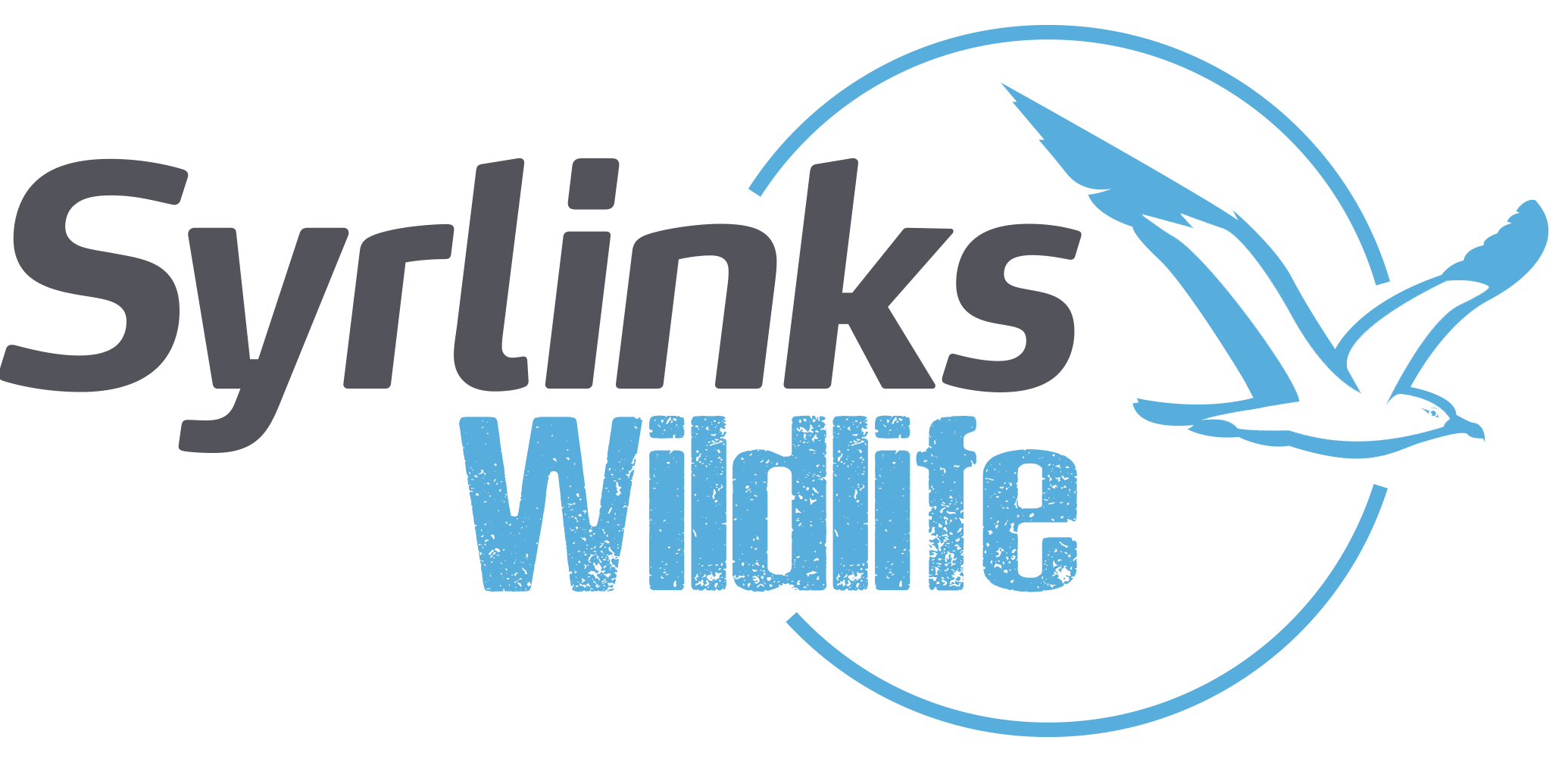 Syrlinks Wildlife | Argos Tracking Beacons